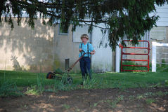 Young adolescent Amish boy mowing Royalty Free Stock Images