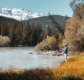 Young adult angler. Young amateur angler fishing in the rapid river with snow caped mountains on the background. Altai, Russia royalty free stock image