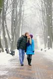 Young adult couple. In the park. Winter stock images
