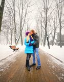 Young adult couple Stock Photos