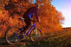 Young adult cyclist riding mountain bike in the countryside Stock Image