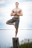 Young Adult Doing Yoga on a Stump in Nature Royalty Free Stock Photos