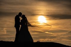 Young adult male groom and female bride holding hands on beach at sunset. Stock Photos