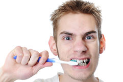 Young adult man brushes teeth royalty free stock photo