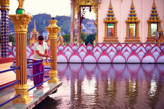Young adult man feeding fishes in beautiful buddhist temple Stock Photos