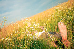 Young adult man in spring grass Royalty Free Stock Photos