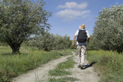 Young adult man tourist on rural road Stock Photos