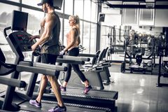 Couple doing treadmill run. Young adult men and women doing running exercise on treadmill in modern fitness center. Toned image Stock Images