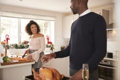 Young adult mixed race couple preparing Christmas dinner together at home, man basting roast turkey in the foreground turning to t stock photography