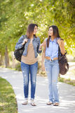 Young Adult Mixed Race Twin Sisters Walking Together Royalty Free Stock Image