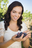 Young Adult Woman Enjoying The Wine Grapes in The Vineyard Stock Photography