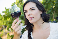 Young Adult Woman Examines A Glass of Wine in Vineyard Stock Photos