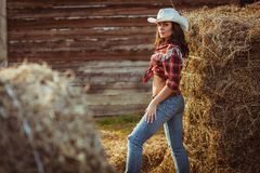 Young adult woman posing on farmland Royalty Free Stock Image