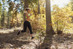 Young adult woman running in a forest jumps fallen branches stock image