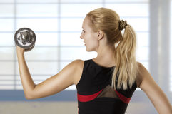 Young adult woman workout Royalty Free Stock Images