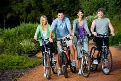 Young Adults on Bikes. A group of four adults on bicycles in the countryside Royalty Free Stock Image