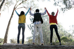 Young adults cheering. Three young adults outdoor holding hands in the air facing away from the camera Stock Images
