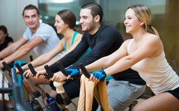 Young adults on exercise bikes in gym Royalty Free Stock Image