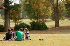 Young Adults Sit On Blanket And Talk In Park Stock Photo