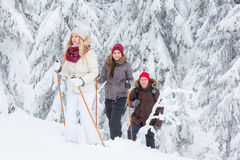 Young adults snowshoeing Stock Photo