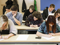 Young Adults studying. Large group of young adults studying in a classroom Stock Photography