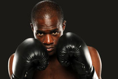 Young African American Boxer Royalty Free Stock Images