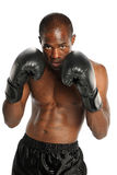 Young African American Boxer royalty free stock photos