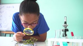 Young African American mixed kid using a magnifying glass on a green plant in chemistry and biology classroom lab