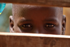 Young african boy Stock Photography