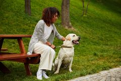 Young african lady sitting on bench in park and holding dog Stock Image