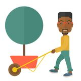 Young african man pushing the cart with tree Stock Images