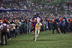 A young agile Nihang Sikh riding a horse during Hola Mohalla, India Stock Photo