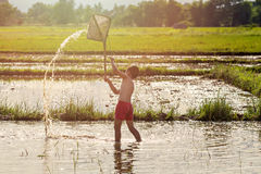 Young agriculturist fishing in swamp Stock Images