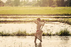 Young agriculturist fishing in swamp Royalty Free Stock Photography