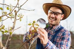 Free Young Agronomist Examine The Blooming Trees In Orchard Royalty Free Stock Image - 143988806