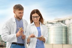Young agronomists near modern granaries. stock image