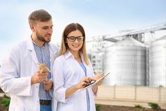 Young agronomists near modern granaries. stock images
