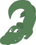 Young alligator Royalty Free Stock Images