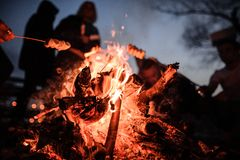 Young And Cheerful Friends Sitting And Fry Marshmallows Near The Fire Royalty Free Stock Images