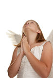 Young angel girl praying Royalty Free Stock Photography