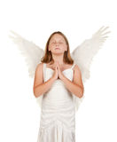 Young angel girl praying on white Stock Images