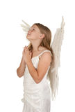 Young angel praying on white background. Young angel girl praying isolated on white background Royalty Free Stock Photo