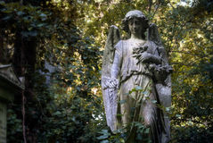 Young angel statue with flowers in a London cemetery looks down at grave Royalty Free Stock Photo