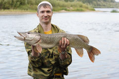 Young angler holds and showing big pike. Horizontal frame Royalty Free Stock Images