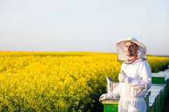Young apiarist gesturing thumb up. Young proud apiarist on the blooming rapeseed field gesturing thumb up. Narrow depth of field, selective focus Royalty Free Stock Image