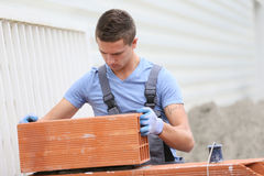 Young apprentice in brick laying working. Young brick layer working outside on brick wall construction Royalty Free Stock Photography