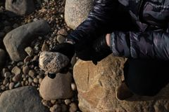Young archaeologist on a boulder beach looking for exotic rocks on a coastline of a Baltic Sea. Cloudy weather stock images