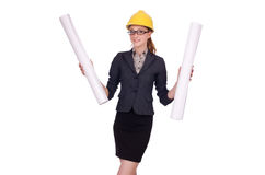 Young architect with drawings Stock Images