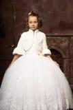 Young aristocrat Stock Photos