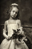 Young aristocrat Royalty Free Stock Photo